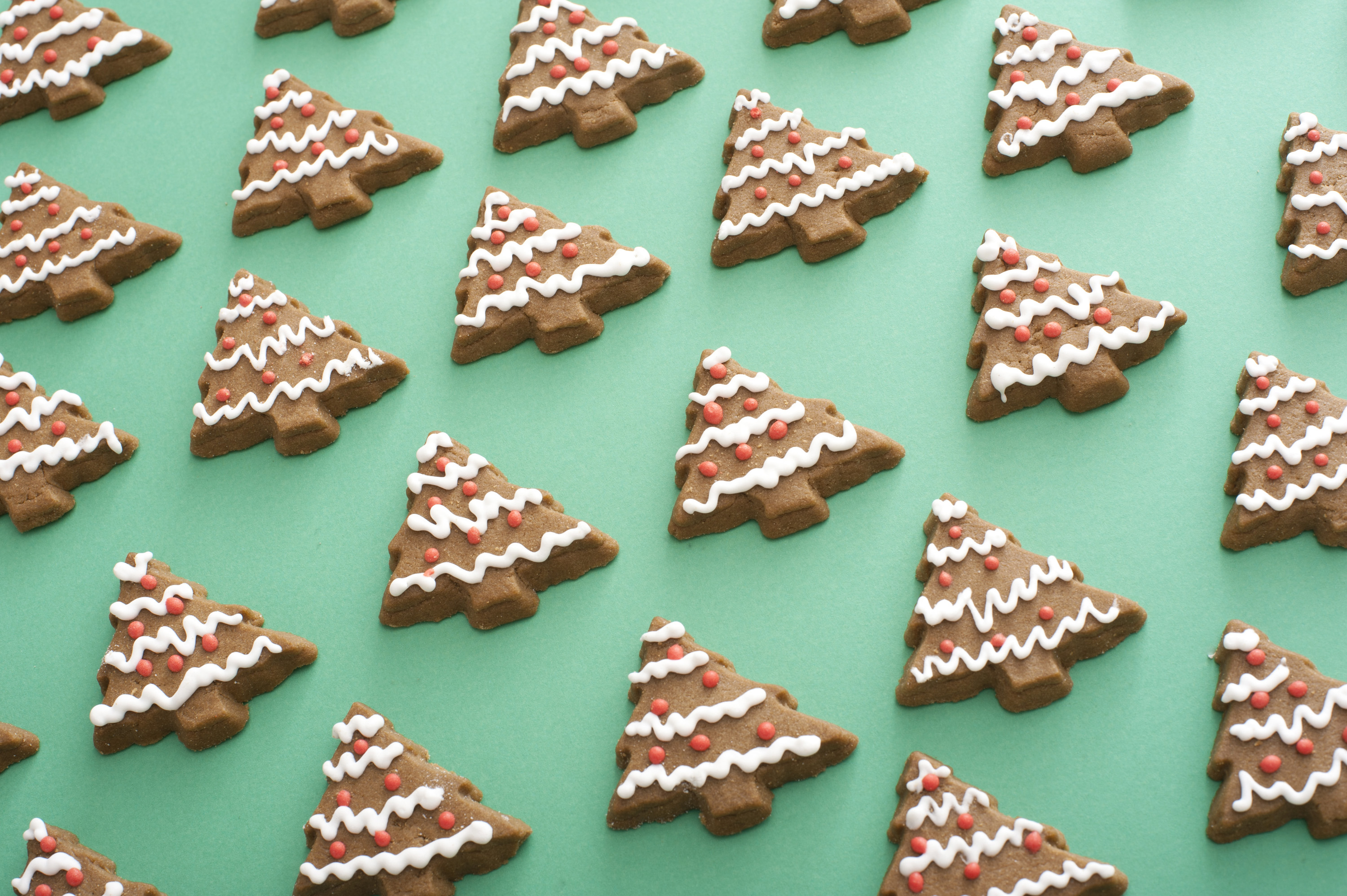 Background of traditional gingerbread Christmas cookies shaped as trees with decorative icing laid out neatly on a green surface viewed high angle