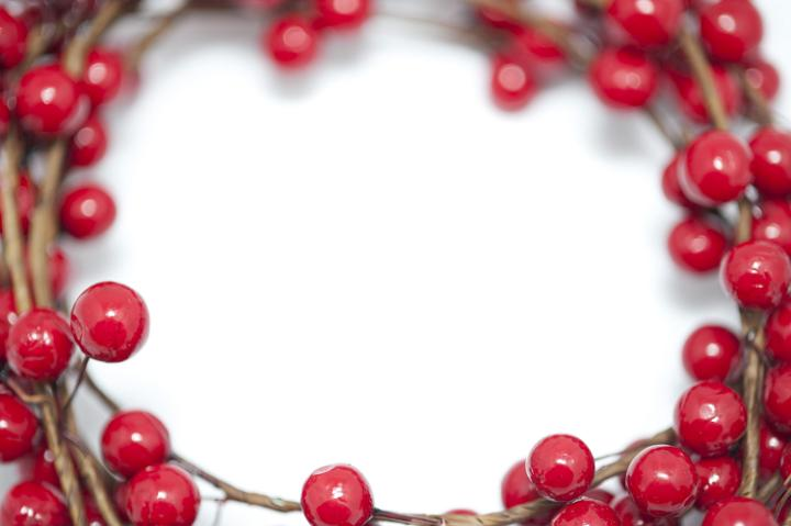 photo of red berry christmas border