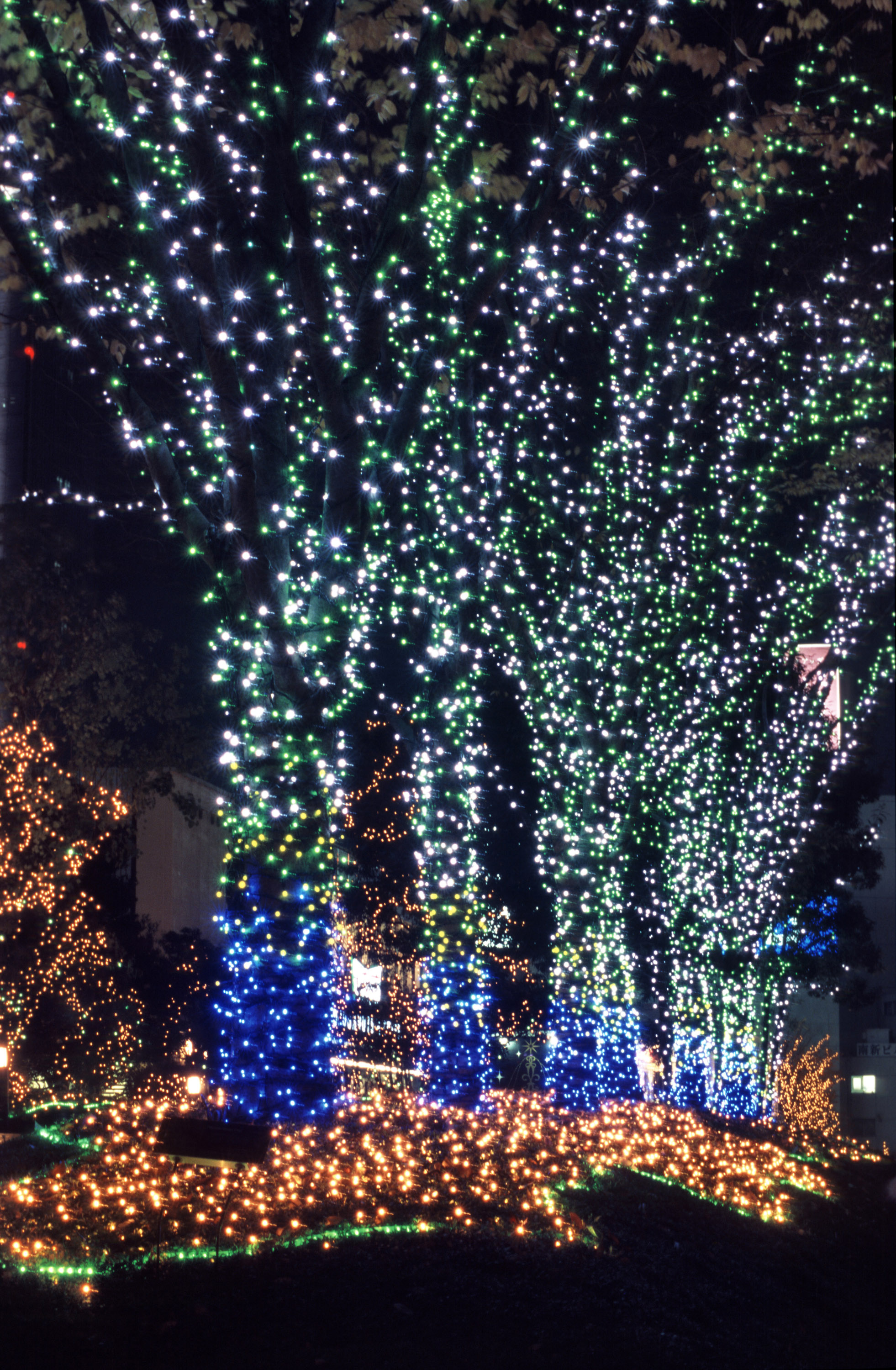 a display of christmas lights brighten a christmas evening in Tokyo