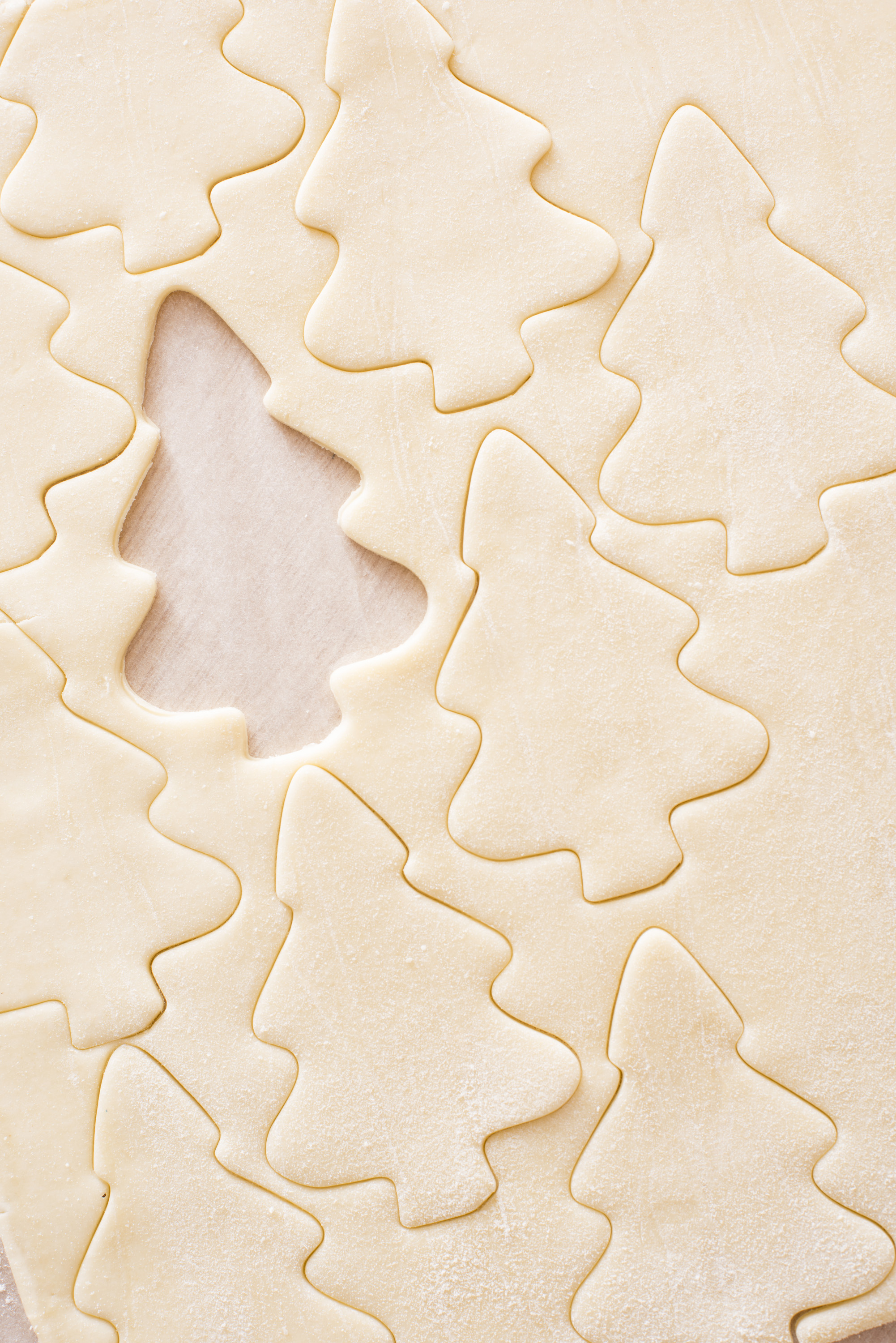 Baking homemade Christmas tree shaped cookies with a full frame background of uncooked rolled dough with the cut out shapes of the biscuits