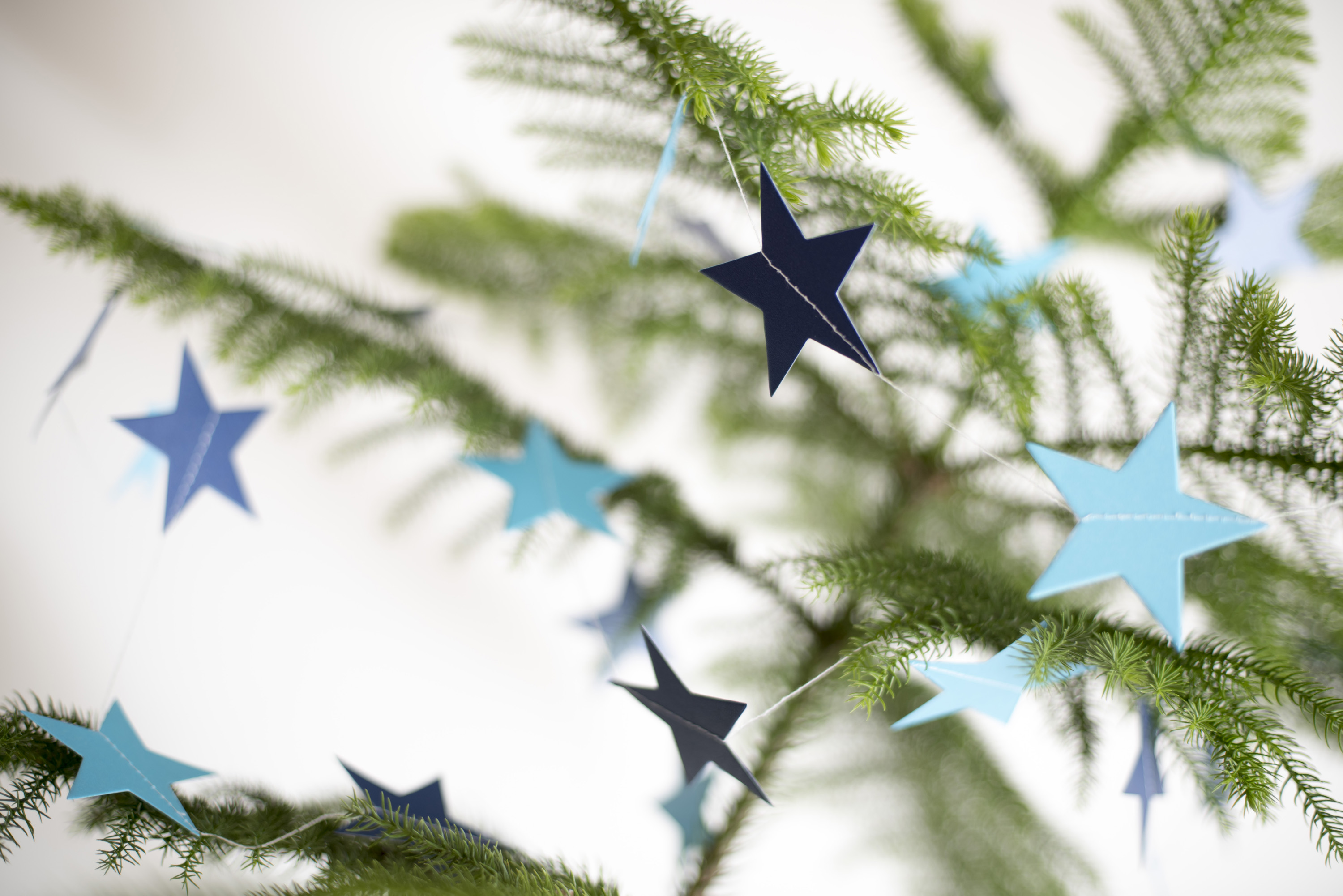 Close up shot of some paper stars hanging on a Christmas tree