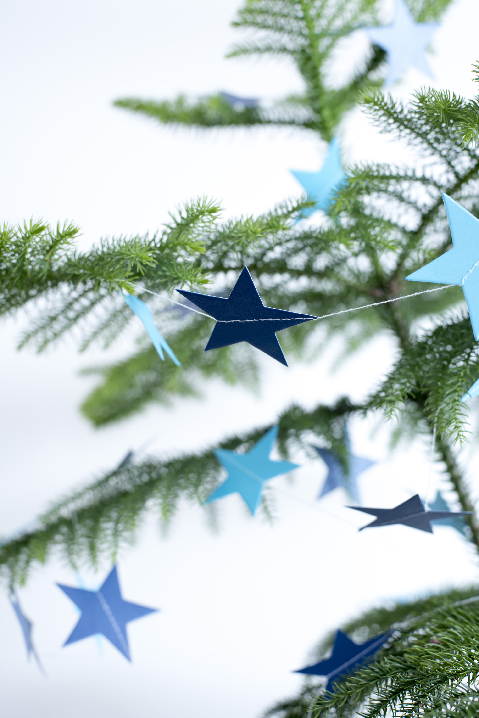 Simple natural evergreen pine Christmas tree with blue paper stars for a country celebration of the holiday season