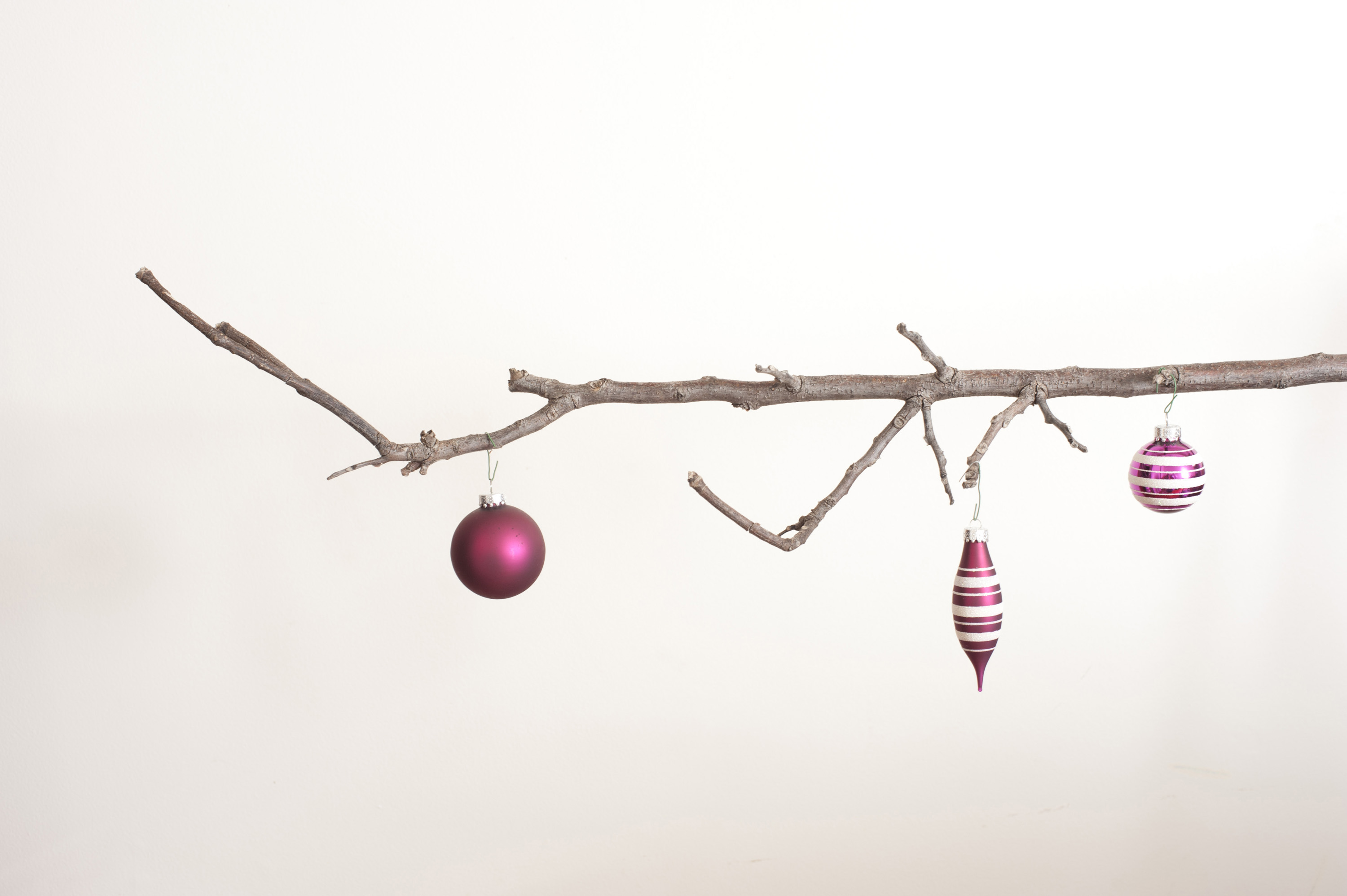 Three christmas balls hanging on leafless branch against of white background