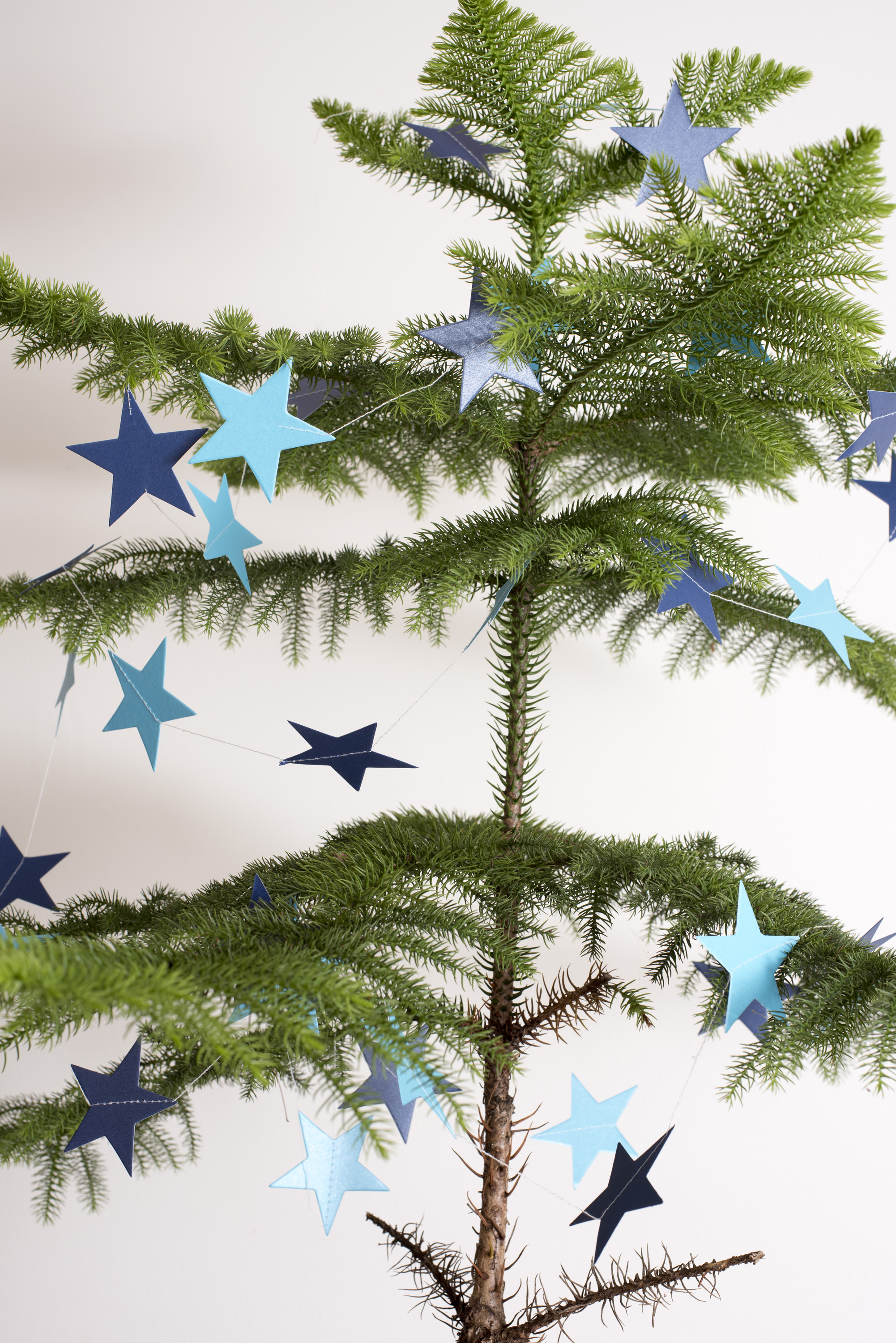 Sparsely decorated natural pine Christmas tree hung with blue paper stars for a simple rustic celebration