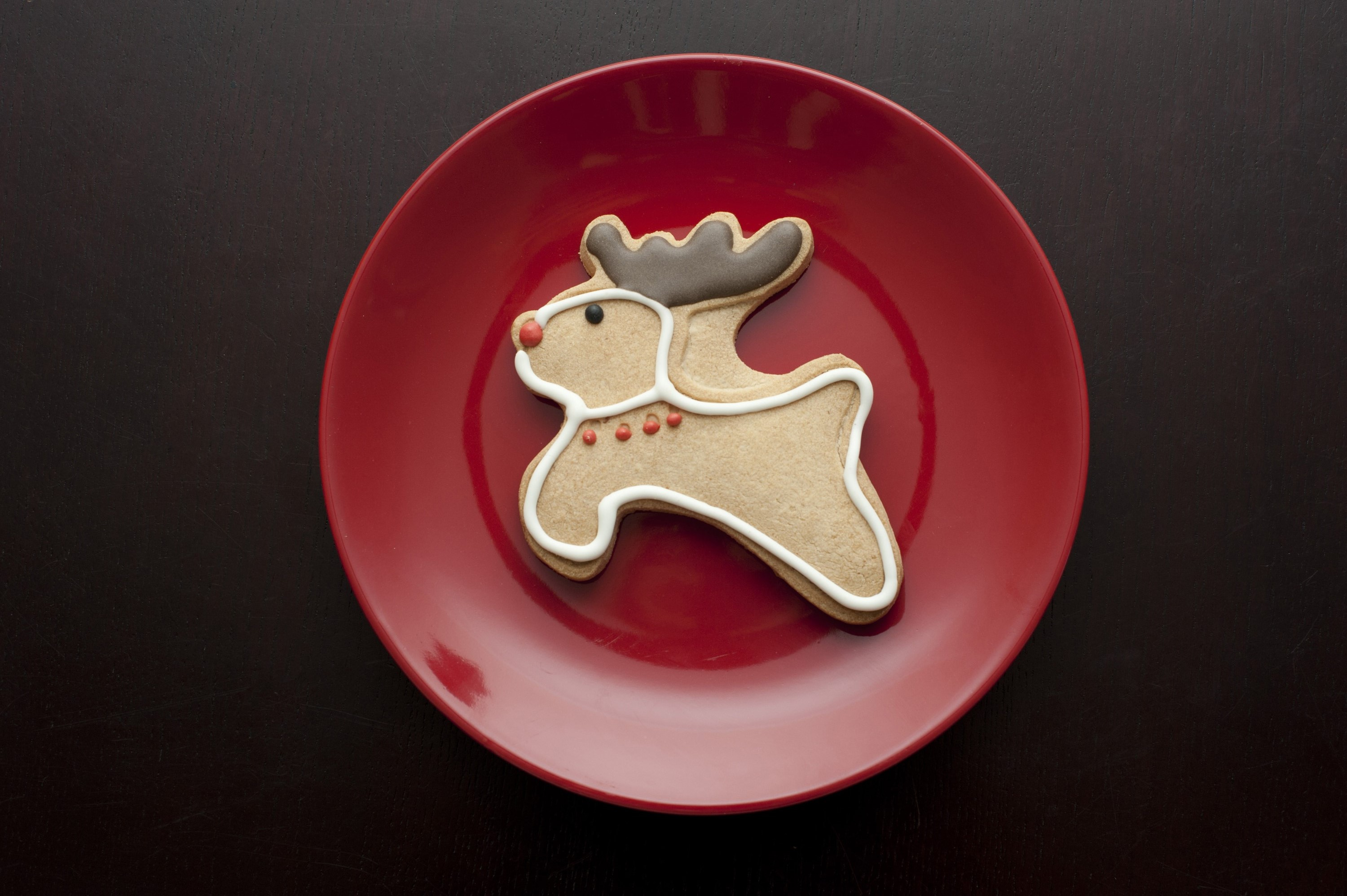 Overhead view of a single decorated gingerbread reindeer cookie with a red nose and collar and chocolate antlers for celebrating the Christmas season