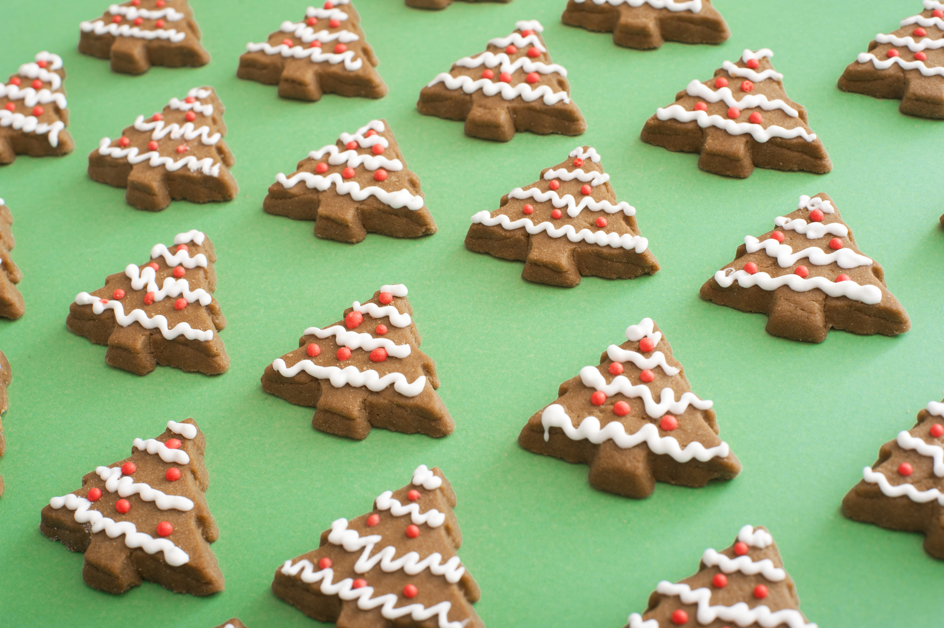 Christmas cookie gingerbread tree backdrop with decorative white and red icing in a high angle view on textured green paper
