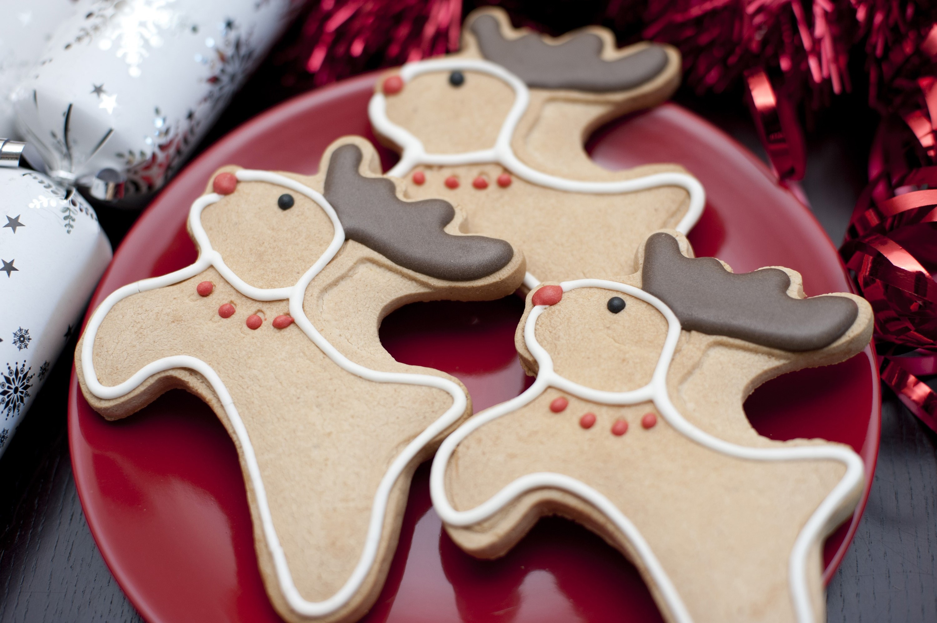 Christmas reindeer gingerbread cookies decorated with red collars and noses and chocolate antlers for a fun Christmas teatime treat