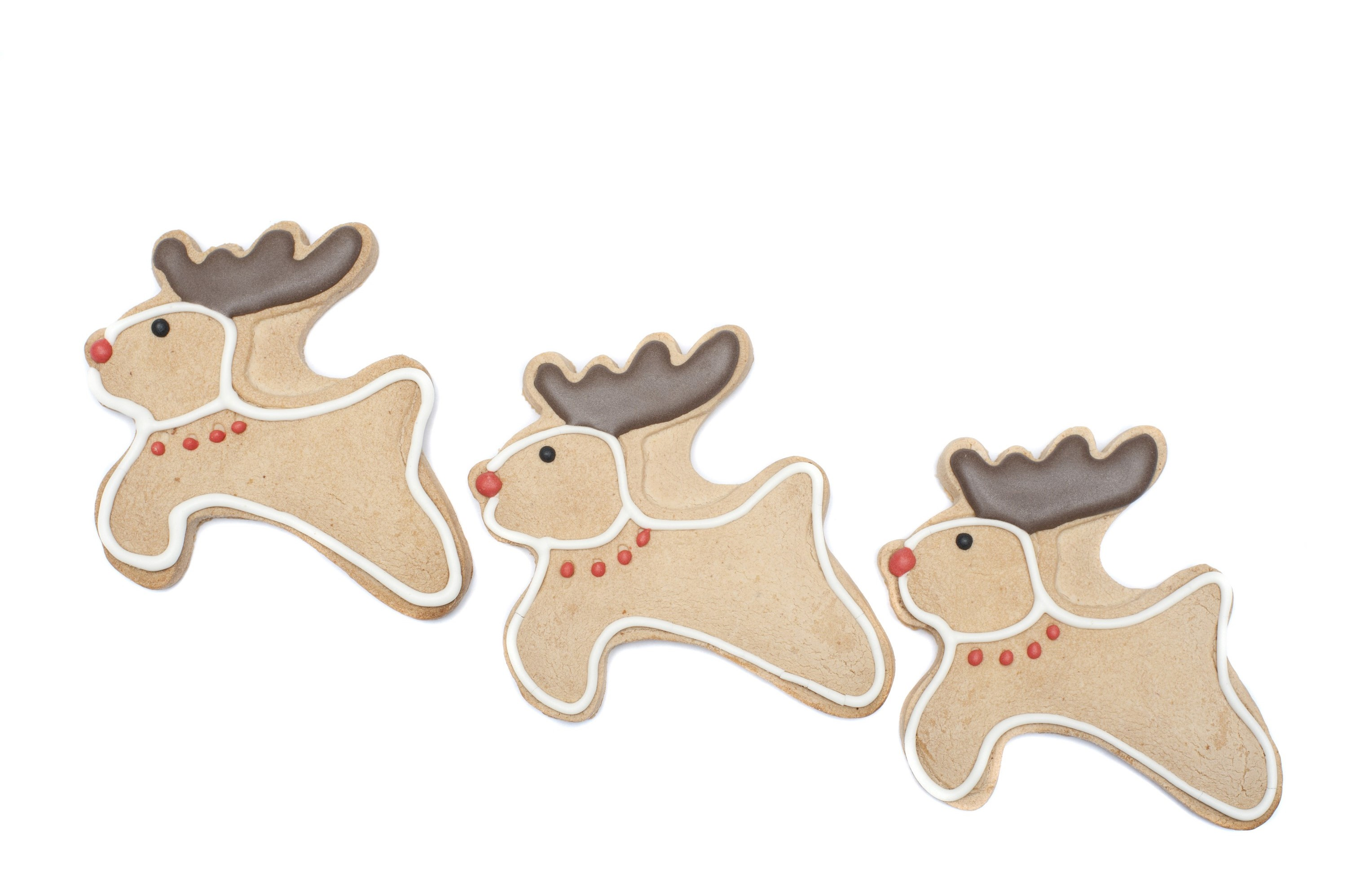 Three reindeer Christmas cookies with cute little leaping deer with red noses and chocolate antlers for a tasty seasonal treat isolated on a white background