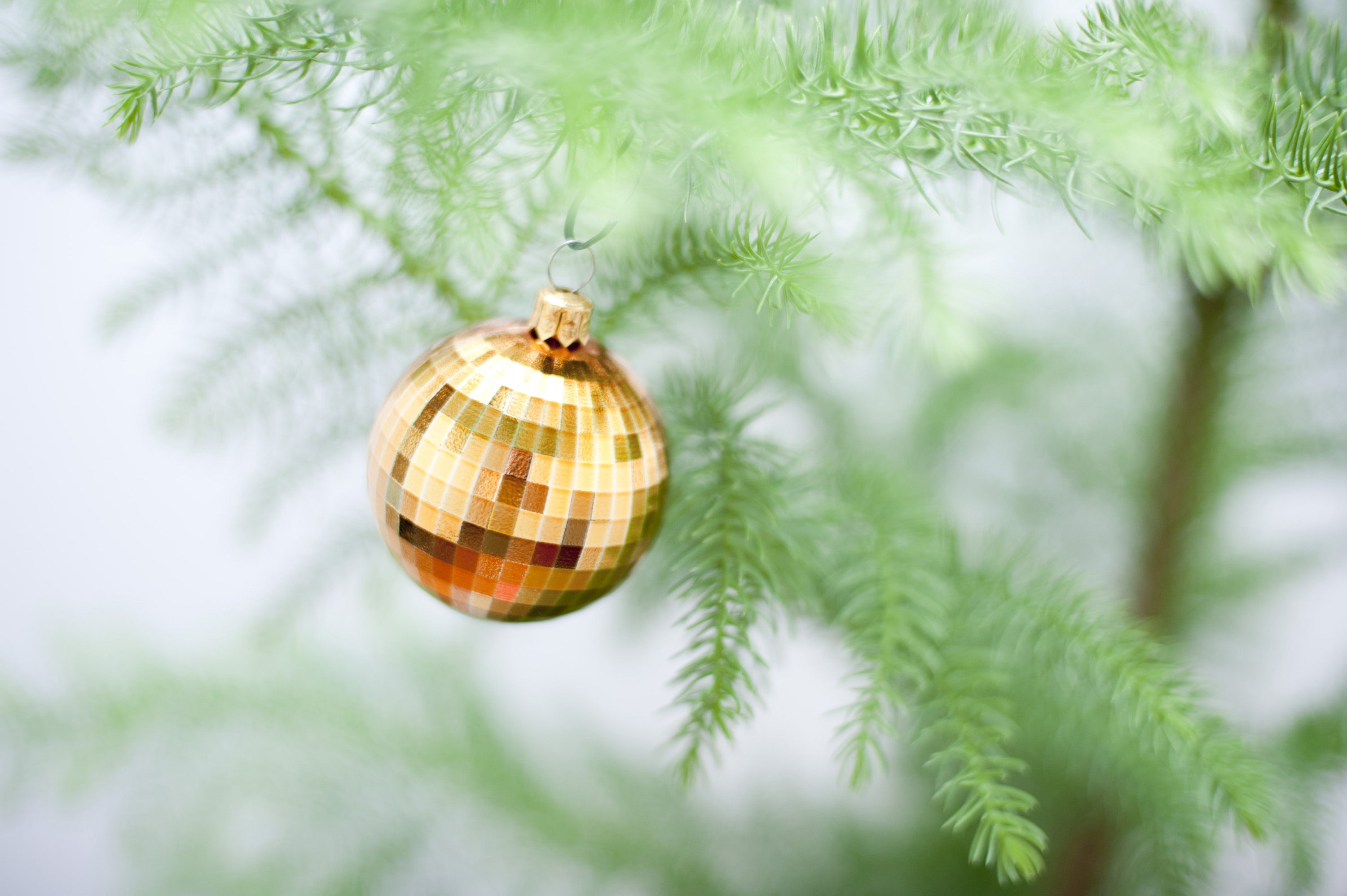 Close up of a single golden Christmas bauble hanging on an evergreen natural pine tree with shallow dof and copyspace for your seasonal greeting