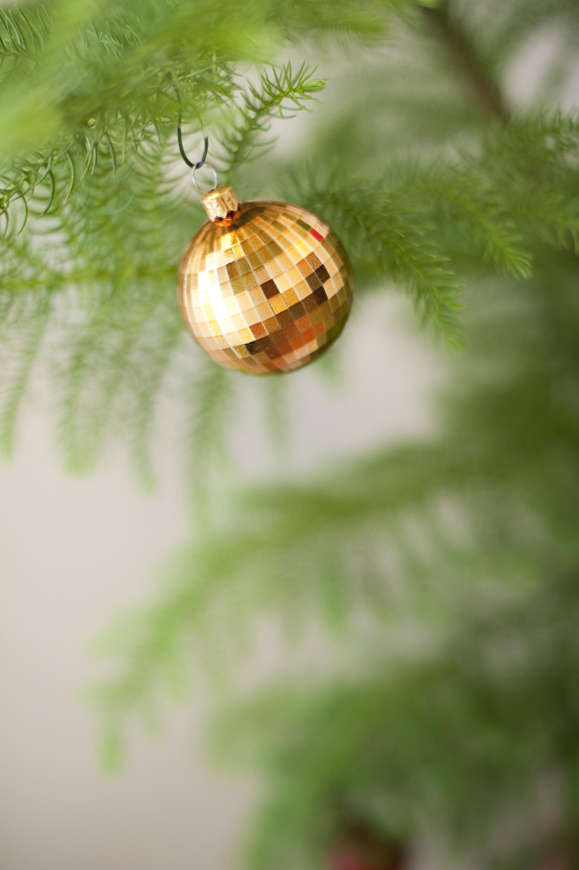 Single metallic golden Christmas bauble hanging on a green tree with copy space below for your holiday greeting