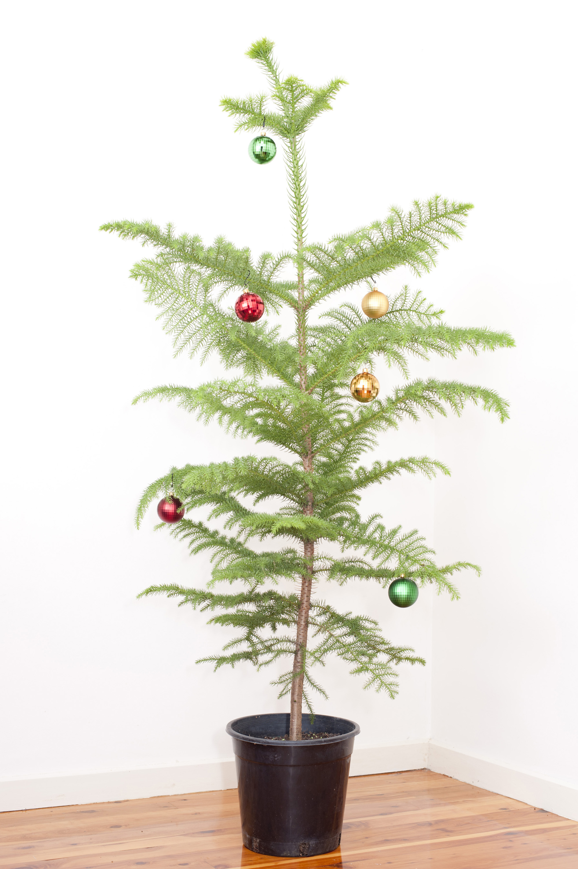 Baubles For Christmas Tree
