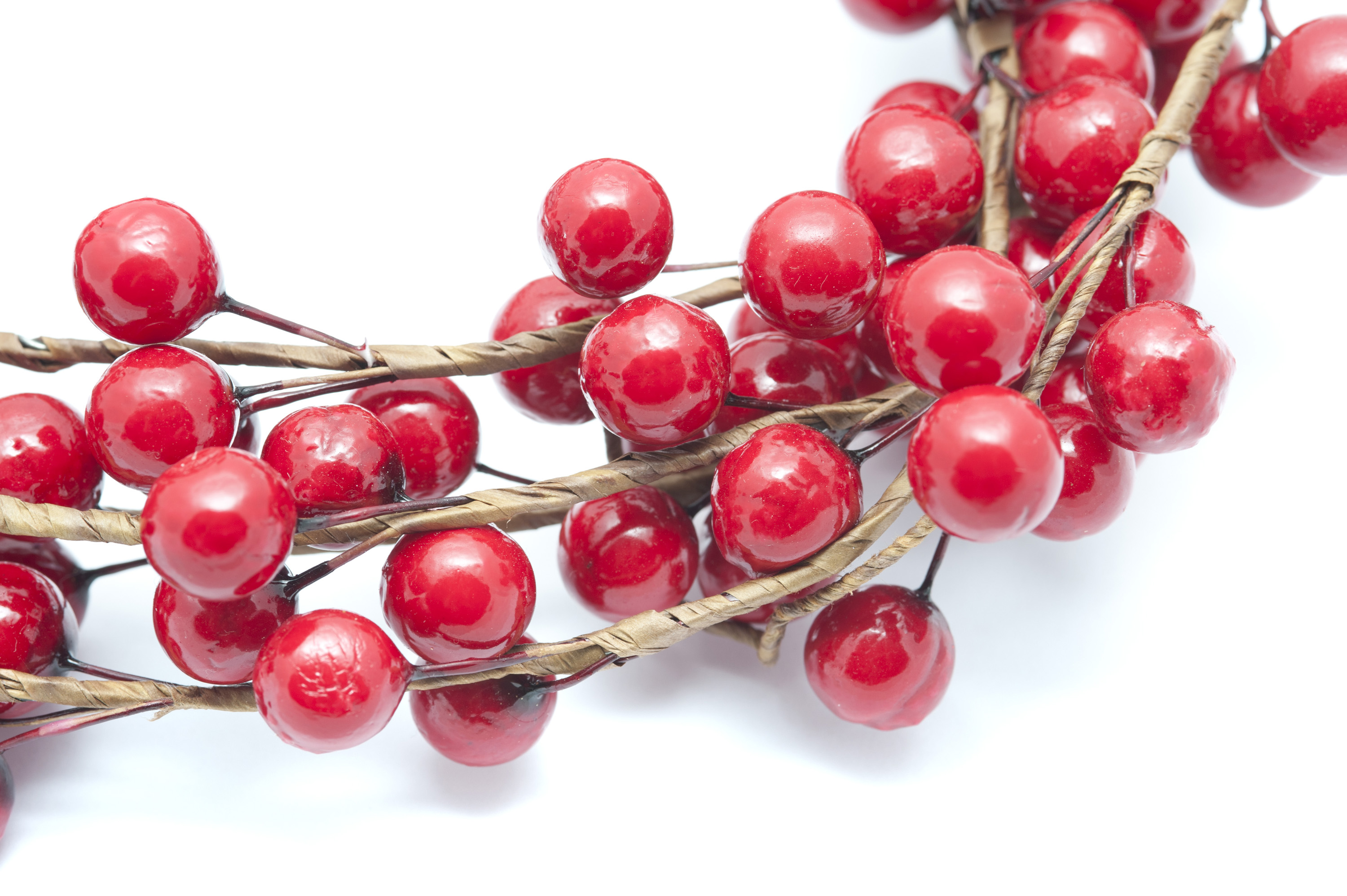 Crop close up decorative branch with red berries isolated on white background.