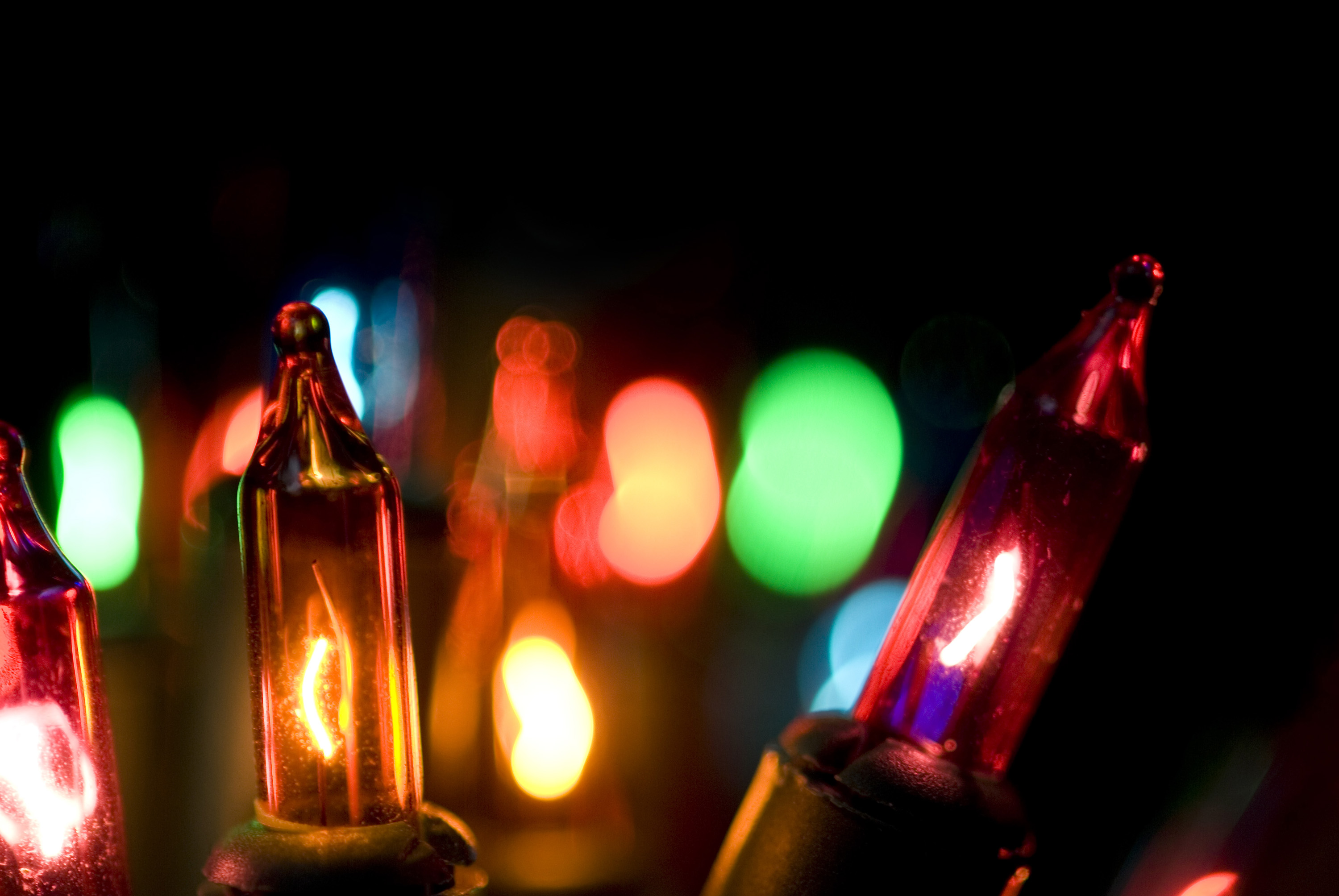 close up on multicolored incandescent christmas mini lights