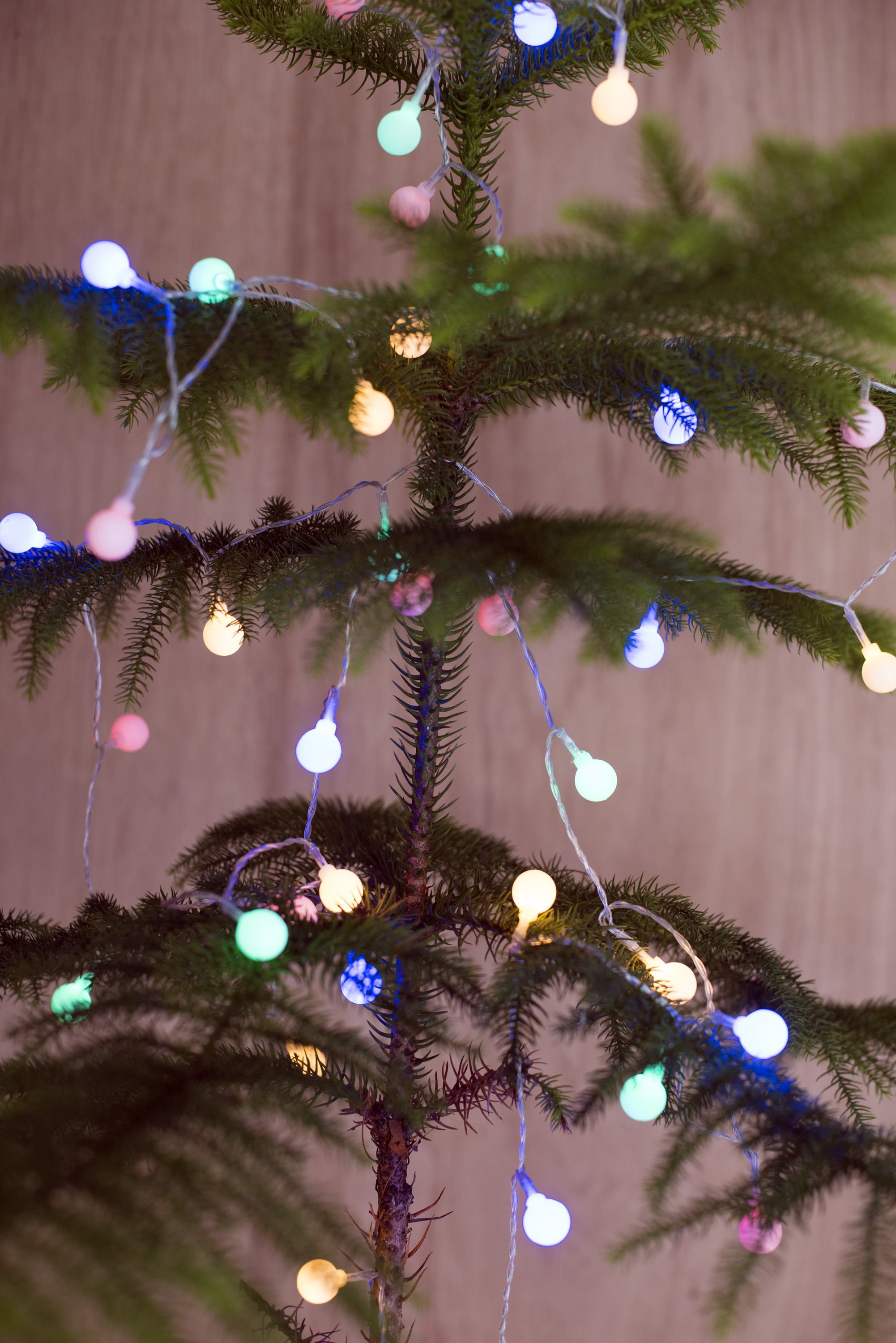 Close up shot of a christmas tree decorated with christmas lights