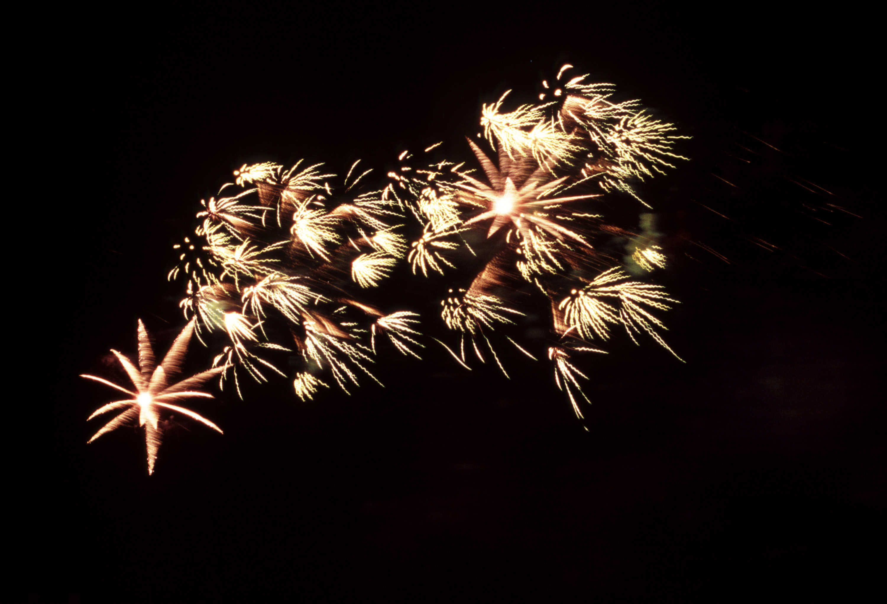 fireworks sparkling in the night sky, celebration of christmas and the new year