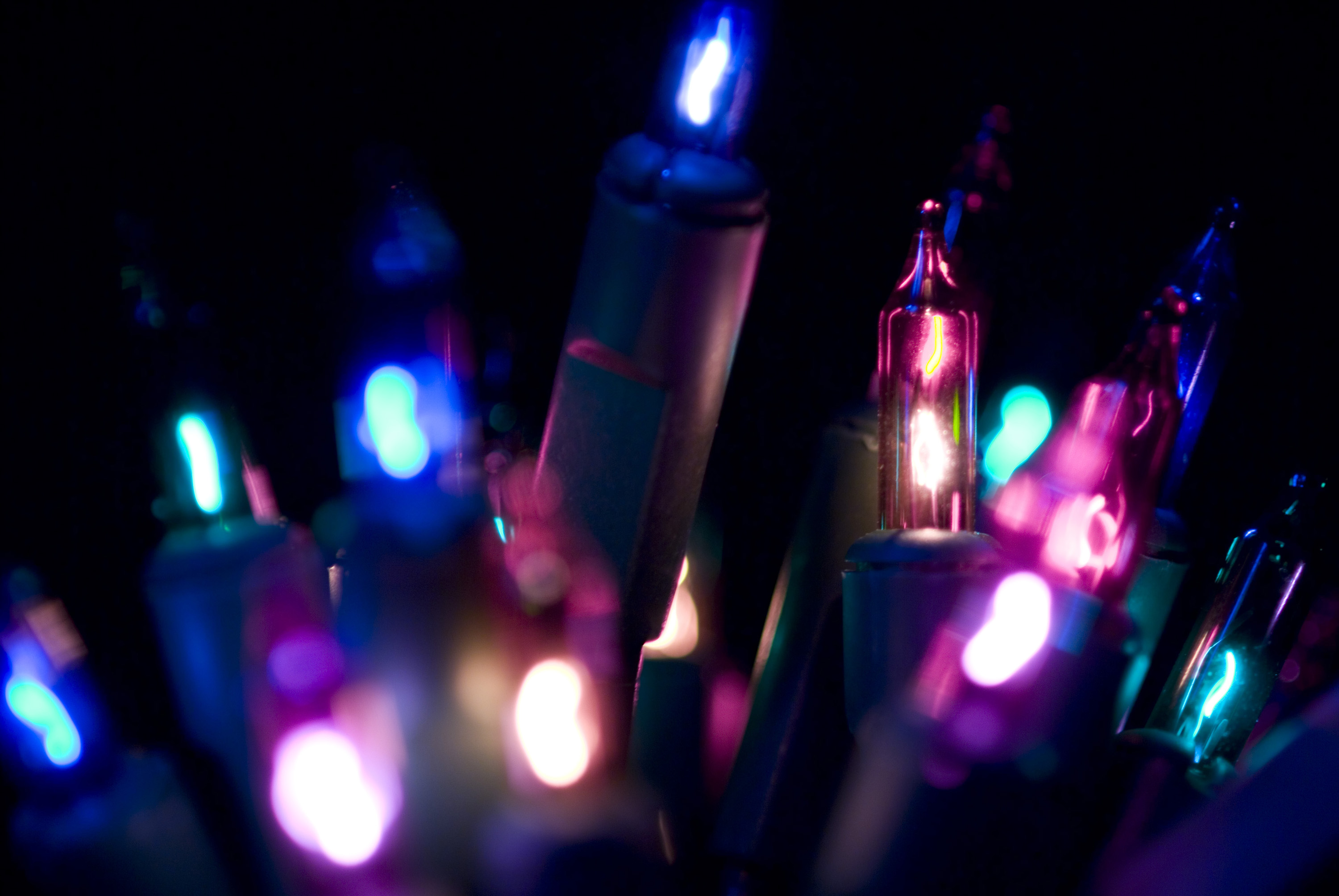 close up on purple and pink coloured christmas fairy lights