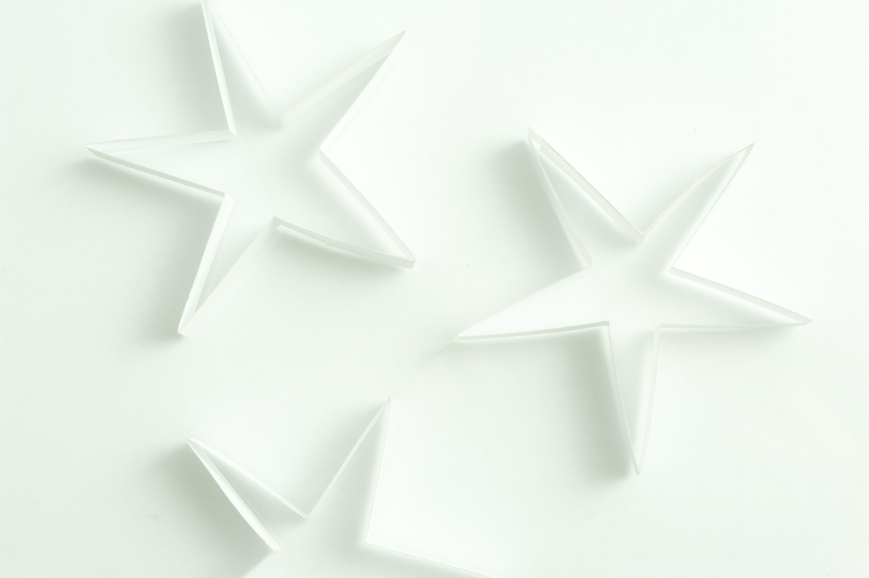 Photo of Delicate white stars | Free christmas images