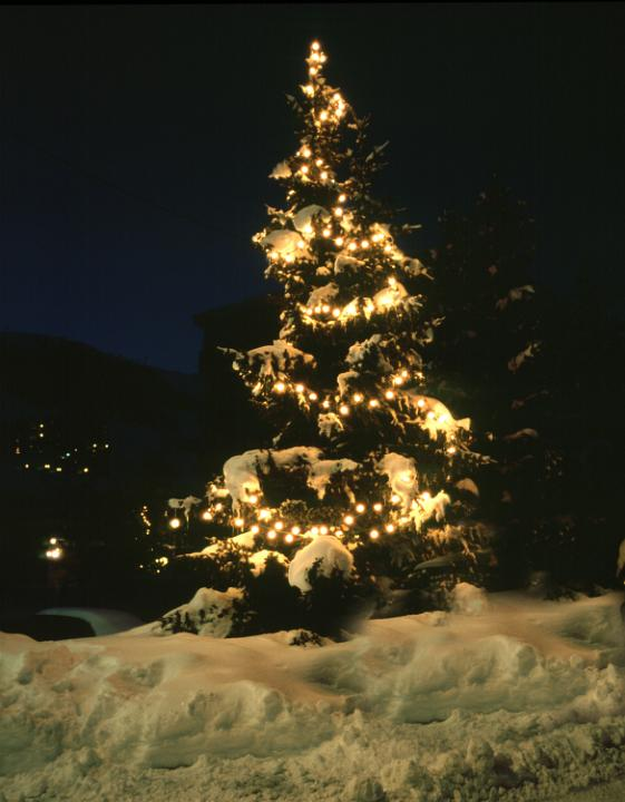 White Lights Christmas Tree