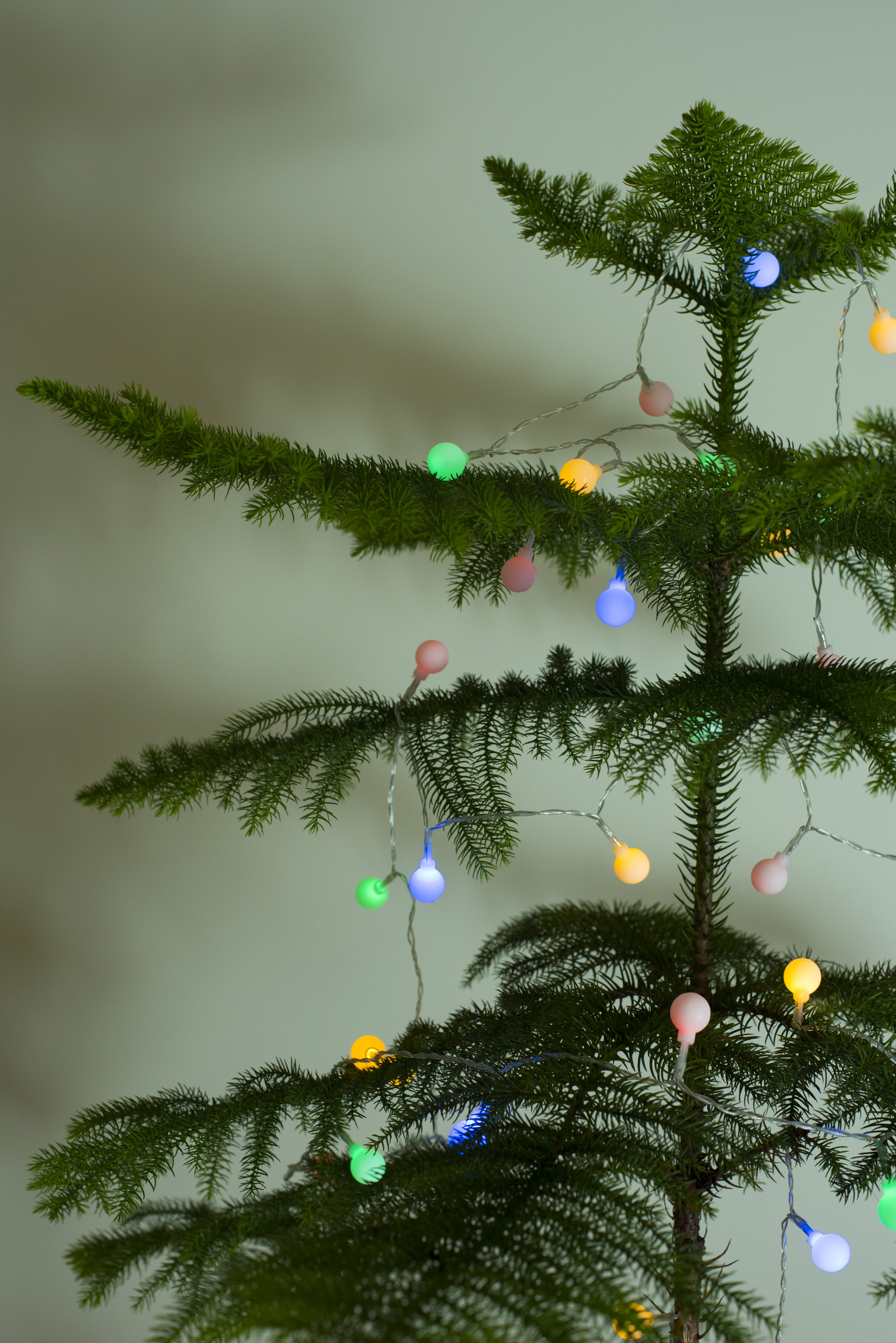 Photo Of Colorful Lights On A Natural Christmas Tree Free Christmas Images